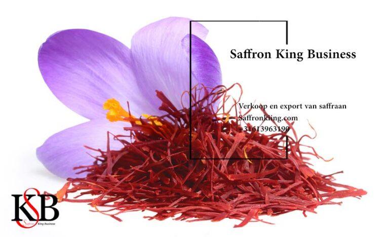 Planting saffron